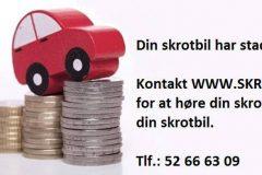 www.skrotdinbil.net